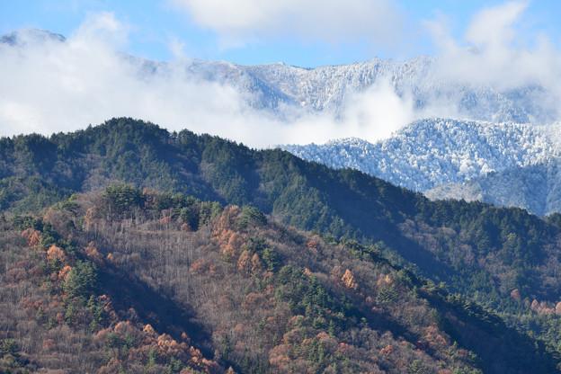 冬と秋のコラボ