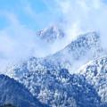 Photos: 冬が来たよ