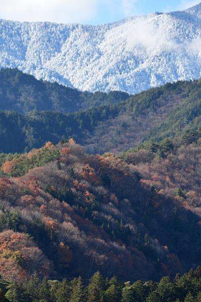 新雪と紅葉のグラデーション
