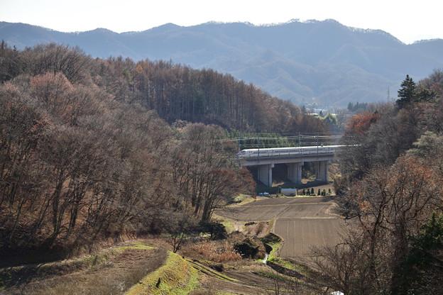 冬枯れを行く北陸新幹線