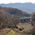 Photos: 冬枯れを行く北陸新幹線