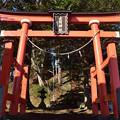 Photos: 古間神社鳥居