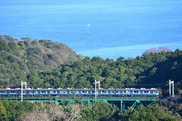 伊豆急行 8000系電車
