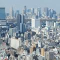 Photos: 新宿副都心を望む