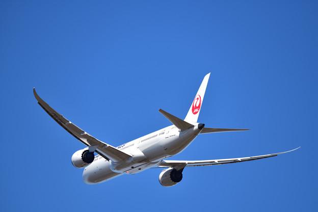 日本航空 B787