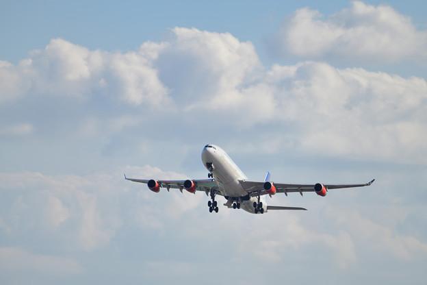 スカンジナビア航空 A340