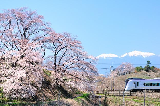 勝沼甚六桜とE353系特急あずさ号