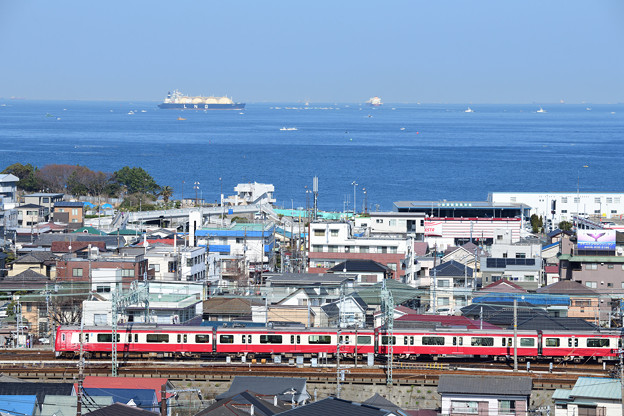 浦賀水道を望と1000形電車
