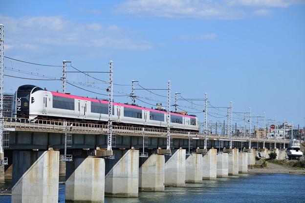 E259系 マリンエクス踊り子号