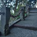 Photos: 灯台への道
