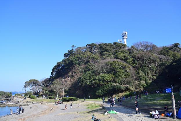 観音崎公園 園地