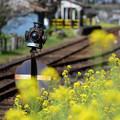 Photos: 高滝駅