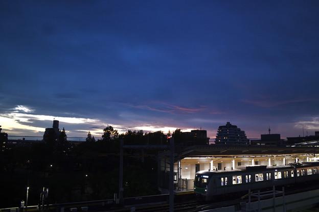 Photos: 夕闇に