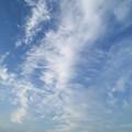 巻雲広がる中川の風景
