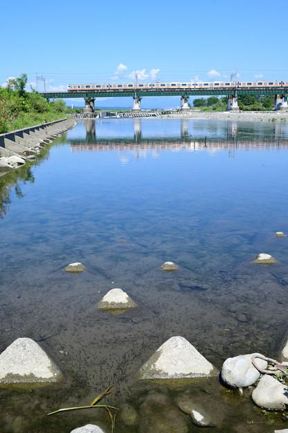 稚魚の群れと鉄橋を渡る電車