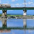 水鏡の鉄橋とE233系電車