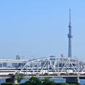 Photos: スカイツリーと荒川橋梁を渡る京成スカイライナー