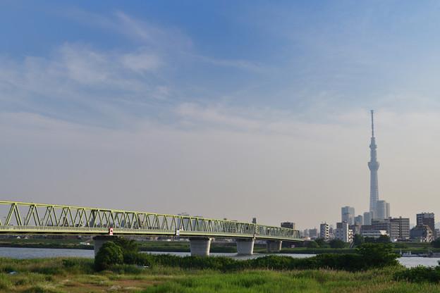 木根川橋全景とスカイツリー