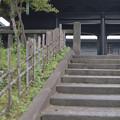 湯島聖堂の石の階段