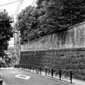 Photos: 無縁坂