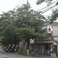 Photos: 酒屋