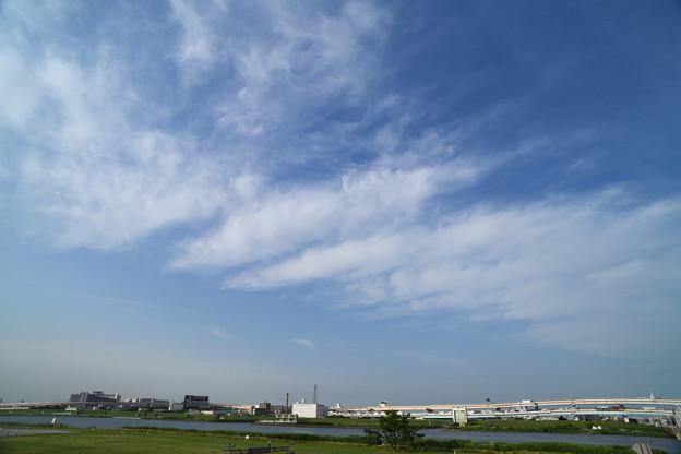 荒川河川敷の風景