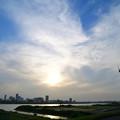 Photos: 夕日に輝く荒川