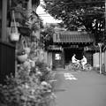 Photos: 長円寺界隈
