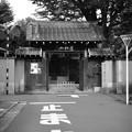 Photos: 長円寺門