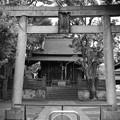 Photos: 氷川神社門