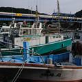 Photos: 上総湊港と255系特急さざなみ号