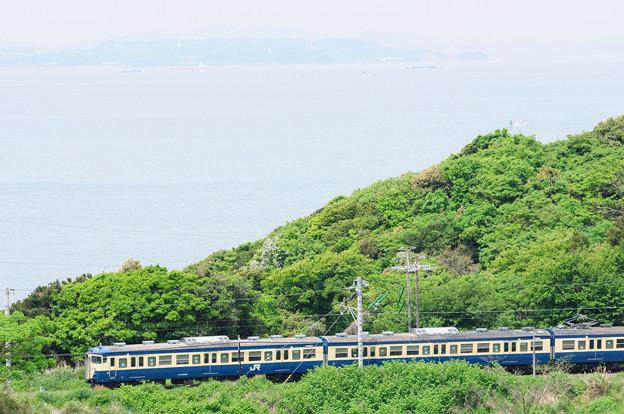 東京湾を望む高台から内房線を走る113系を狙う