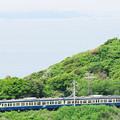 Photos: 東京湾を望む高台から内房線を走る113系を狙う
