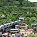 Photos: みかん山を行く300系新幹線