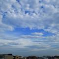 Photos: DSC_3193_00001