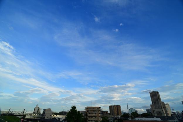 Photos: DSC_3267_00001
