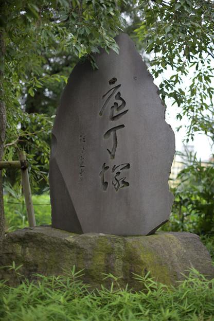 Photos: 包丁塚