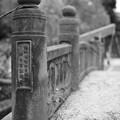Photos: 天龍橋