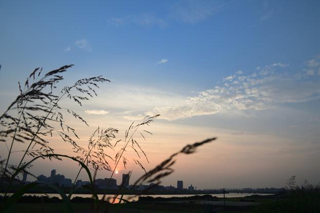 Photos: DSC_4393_00001