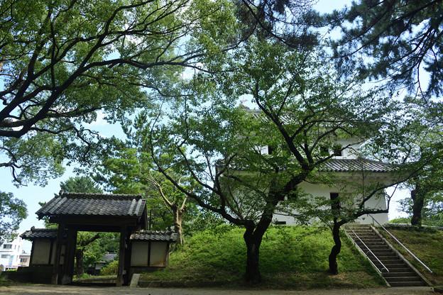 土浦城 霞門と東櫓
