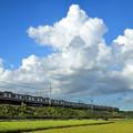 Photos: 夏雲と京急1000形電車