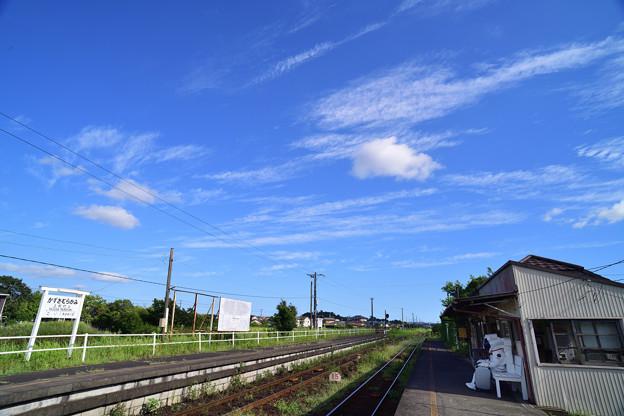 Photos: まちぼうけ