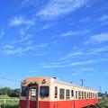 Photos: 単行キハ