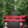 Photos: 朱塗りの鳥居と出世階段