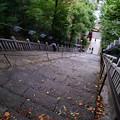 Photos: 出世階段