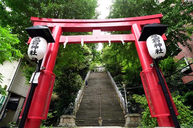 赤い鳥居と出世階段