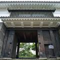 Photos: 常盤木門