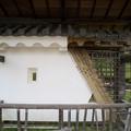 Photos: 塗り壁模型
