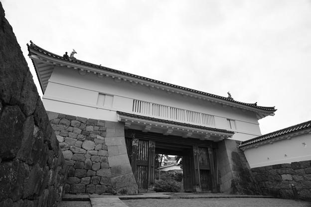銅門 モノクローム