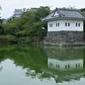 Photos: 隅櫓と天守閣